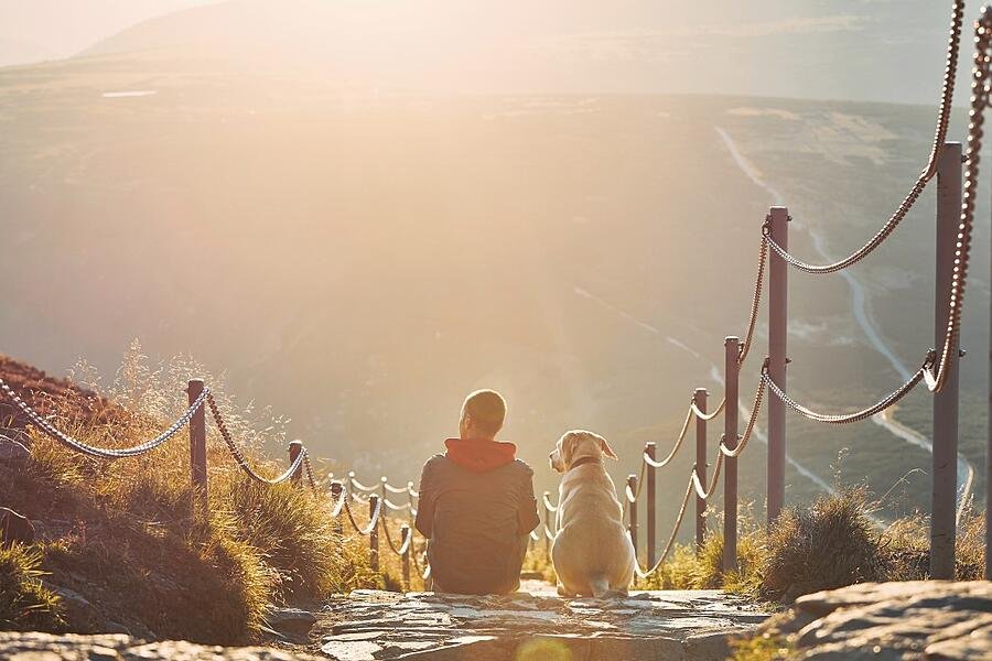 man-together-with-his-dog-sitting-on-pathway-at-sunset-view-from-krkokonse-mountains-czech-republic_t20_kLKawR